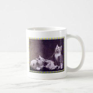 Gatitos e hilado taza clásica