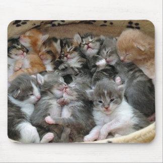 Gatitos el dormir alfombrillas de raton