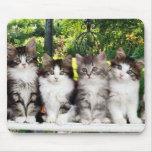 gatitos en el mousepad del jardín tapetes de raton