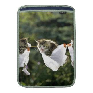Gatitos en ropa interior en cuerda para tender la fundas macbook air