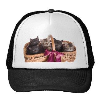 gatitos en una cesta de mimbre gorros