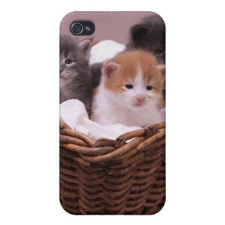 Gatitos en una cesta en la cubierta de color de ma iPhone 4 fundas
