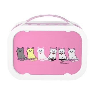 Gatitos en una fiambrera rosada y blanca de la fil