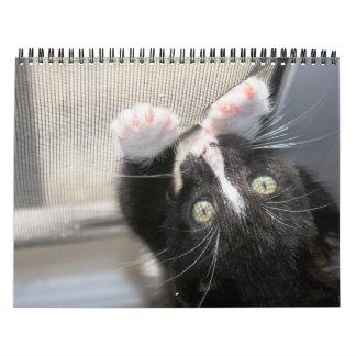 ¡Gatitos, gatitos! 2012 Calendarios