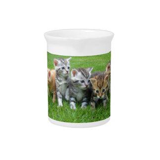 gatitos jarra de beber