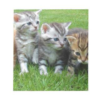 gatitos libreta para notas