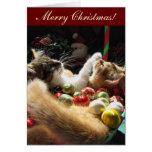 Gatitos lindos del navidad en amor en Navidad Eve Felicitación