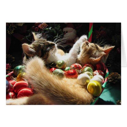 Gatitos lindos del navidad en amor en Navidad Eve Tarjeta De Felicitación