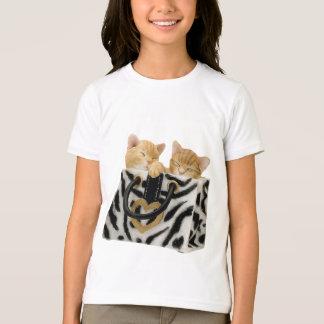 Gatitos lindos en bolso del estampado de zebra polera