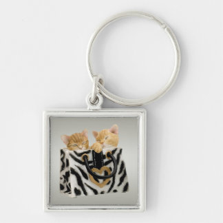 Gatitos lindos en llavero del bolso del estampado