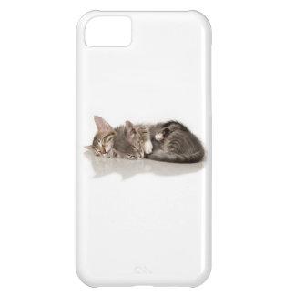 gatitos mimosos funda para iPhone 5C