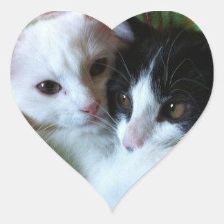 Gatitos mimosos pegatina en forma de corazón