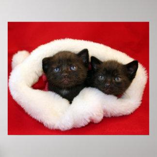 Gatitos negros en el gorra de Santa Poster