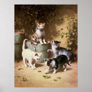 Gatitos que juegan con los escarabajos, Carl Reich Posters
