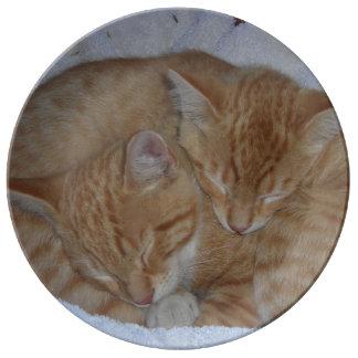 Gatitos suaves soñolientos plato de cerámica
