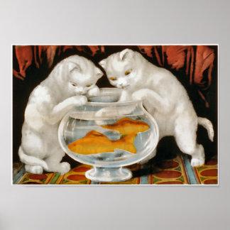 Gatitos y cuenco blancos de los pescados poster