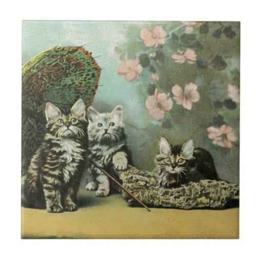 Gatitos y flores azulejos