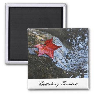 Gatlinburg Leaf Magnet