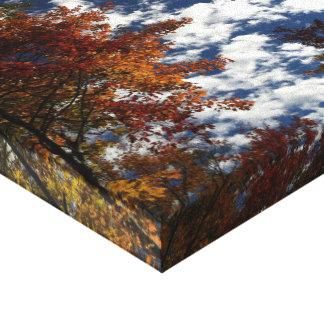 Gatlingburg Sky Canvas Print