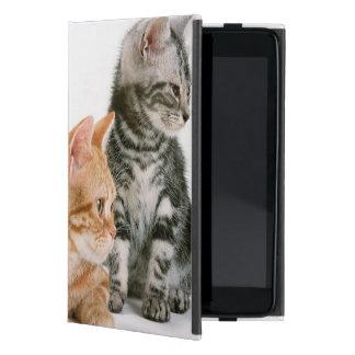 Gato 2 de Shorthair del americano iPad Mini Cárcasas
