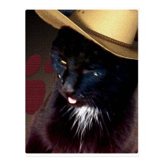 Gato 2 del vaquero tarjeta postal