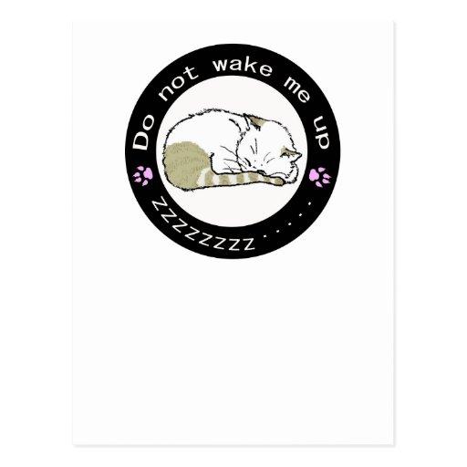 gato 2 el dormir tarjeta postal