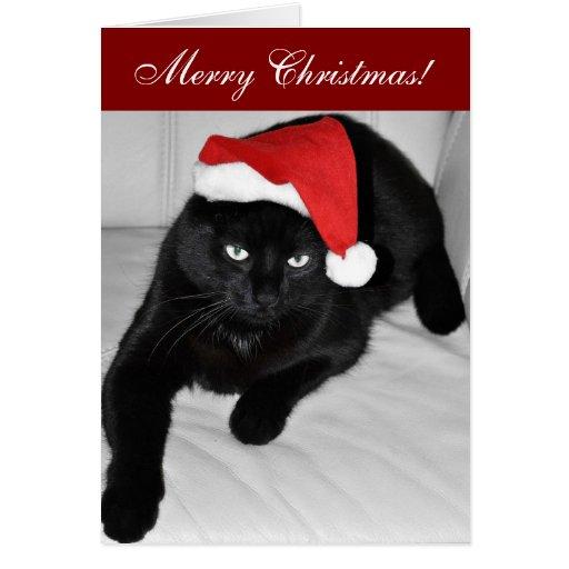 Gato 4 del navidad felicitaciones