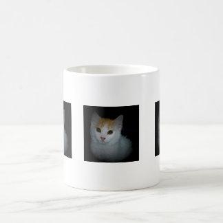 Gato # 4, taza