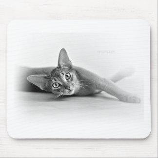 Gato abisinio alfombrillas de ratones
