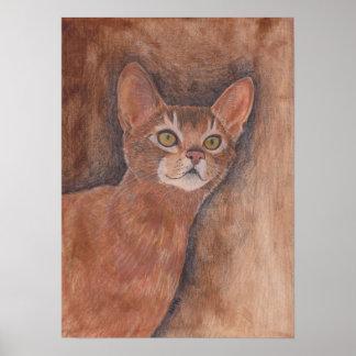 Gato abisinio impresiones