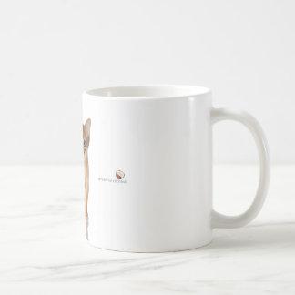 Gato abisinio tazas de café