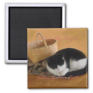 Gato acogedor imán cuadrado