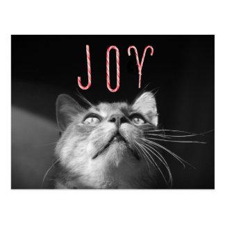 Gato adorable del navidad postal