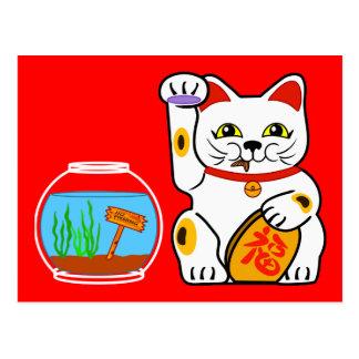 Gato afortunado. Pescados desafortunados Postales
