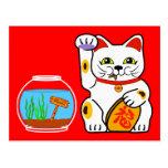Gato afortunado. Pescados desafortunados Tarjeta Postal