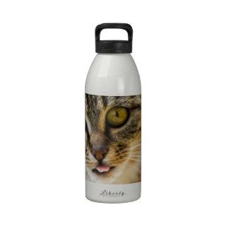 Gato alegre botella de agua