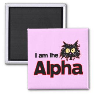 Gato alfa imán cuadrado