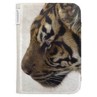 Gato-Amante grande de la fauna del tigre de Sumatr