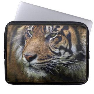 Gato-Amante grande del animal salvaje del tigre de Fundas Ordendadores
