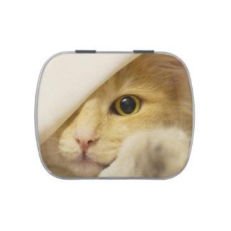 Gato amarillo que mira a escondidas hacia fuera jarrones de dulces