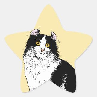 Gato americano del rizo pegatinas forma de estrellaes personalizadas