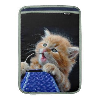 Gato anaranjado azul que juega y que muerde de Cub Funda Para Macbook Air