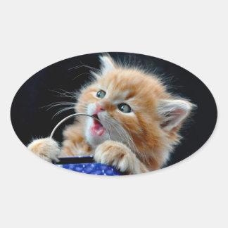 Gato anaranjado azul que juega y que muerde de Cub Pegatina Ovalada
