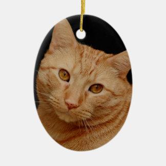Gato anaranjado de Shorthair del americano Adorno Navideño Ovalado De Cerámica