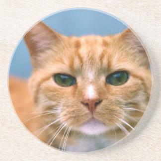 Gato anaranjado del gatito del gatito del Tabby Posavasos Manualidades
