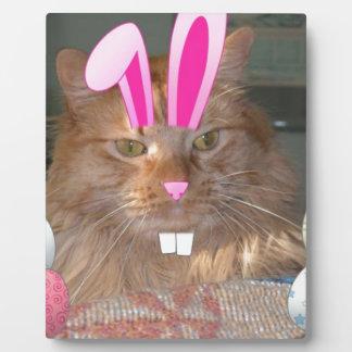 Gato anaranjado del gatito del Tabby de Pascua Placa De Madera