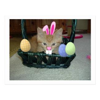 Gato anaranjado del gatito del Tabby de Pascua Tarjeta Postal