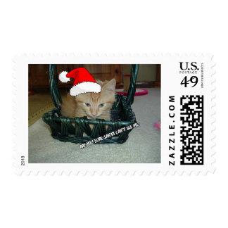 Gato anaranjado del gatito del Tabby del navidad Sello