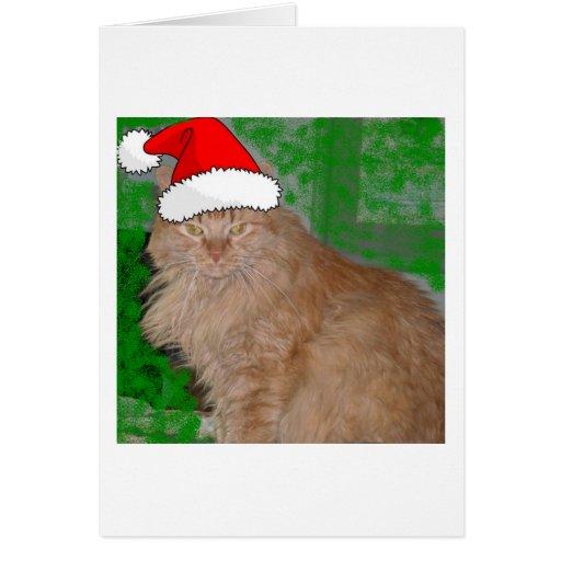 Gato anaranjado del gatito del Tabby del navidad Tarjeton