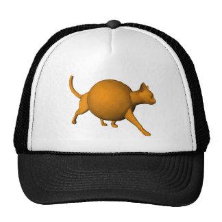 Gato anaranjado divertido gorras de camionero